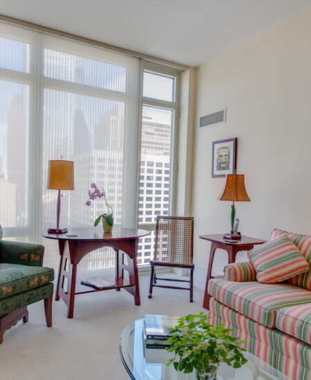treatments for living room windows