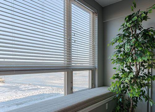 motorized blinds