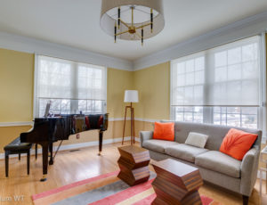 roller shades in living room