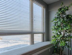 ardmore blinds
